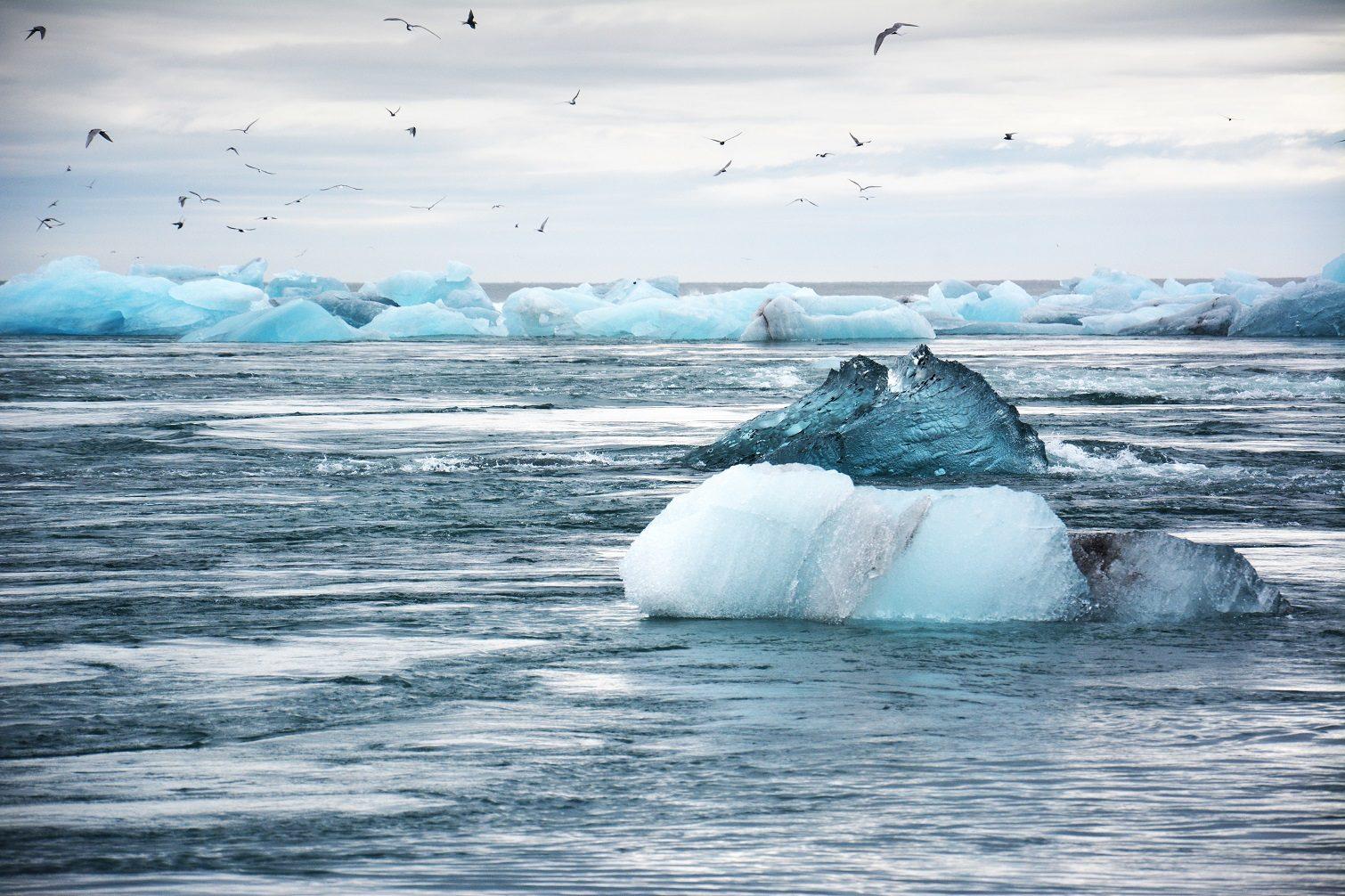ice berg on ocean
