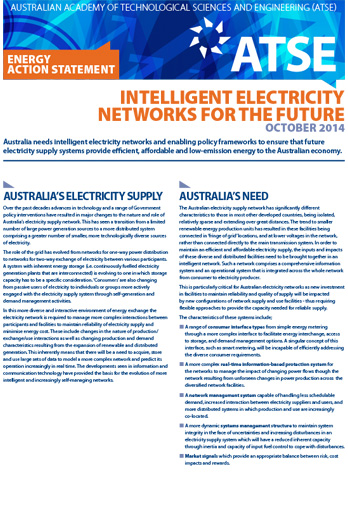 Action statement - intelligent electricity networks future