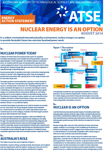 Action statement Nuclear energy is an option