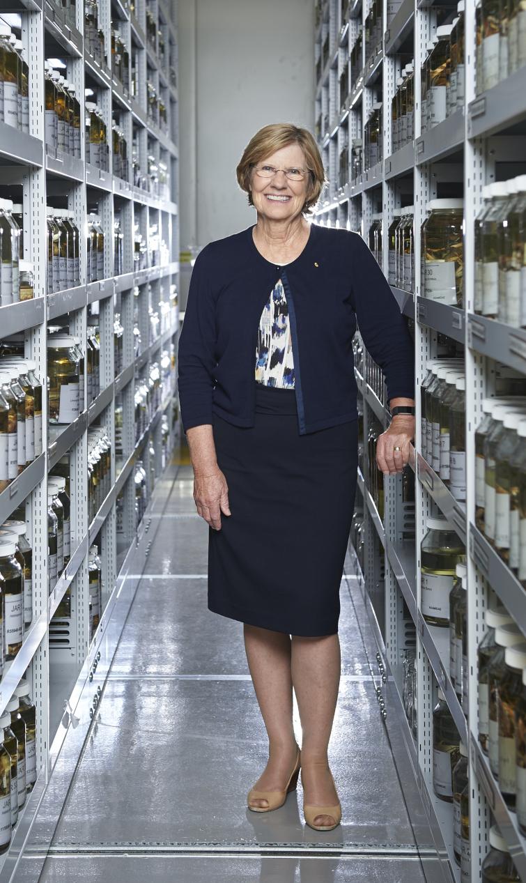 Lyn Beazley half size herpetology lab