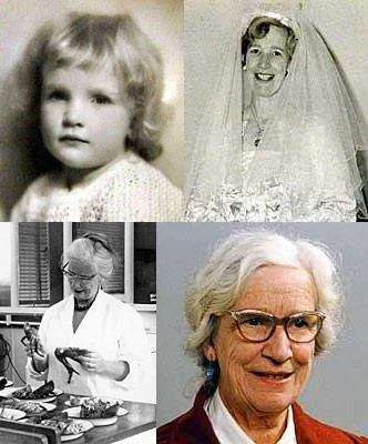 Dr June Olley collage