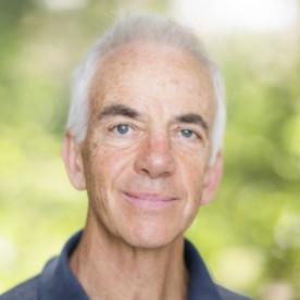 Tony Guttmann